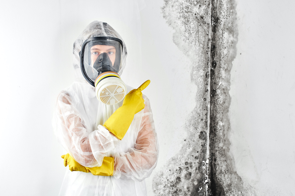 A technician from a mold removal company stands by a wall with mold damage.