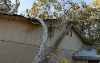 A tree lays across a damaged roof before disaster recovery specialists come to fix it.