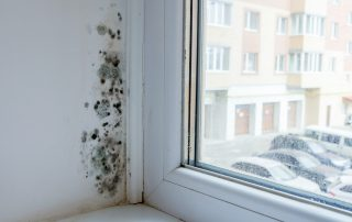 Black mold damage forms by a window.